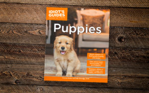 Idiot's Guides: Puppies - cover banner